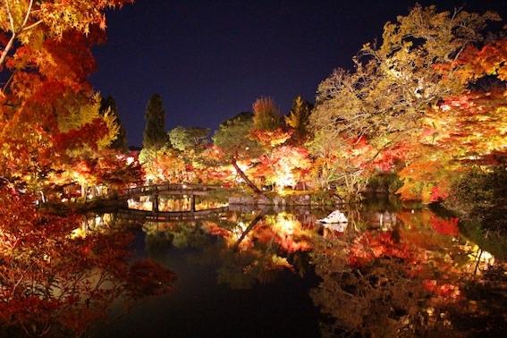 京都 東山 紅葉 見頃